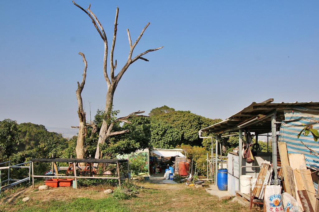 八卦山咖啡06國村咖啡莊園 彰化|走訪八卦山咖啡產地到阿束社看景,聽國村青農栽培得獎咖啡生豆