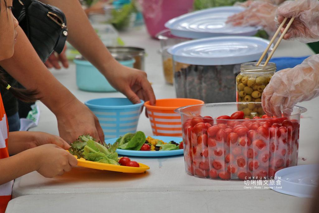 屏東旅遊六堆客家庄採菜體驗趣20