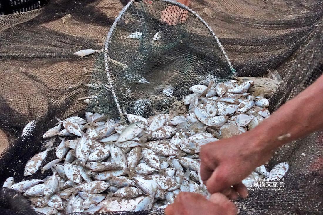 澎湖林投牽罟21 澎湖|牽罟趣體驗在林投沙灘,同心協力靠腰捕魚快來當半日漁夫