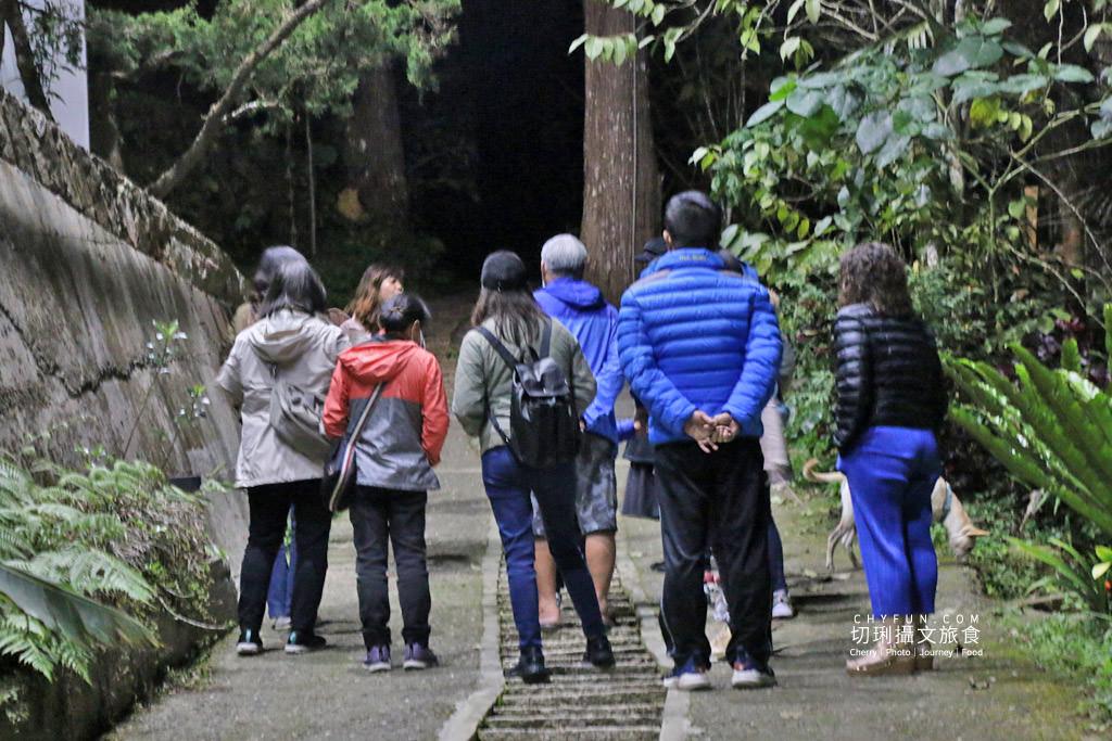 阿里山台18線住宿用餐-龍雲農場06 嘉義|阿里山台18線住宿用餐,體驗二款慢遊空間驚豔大自然就在身旁