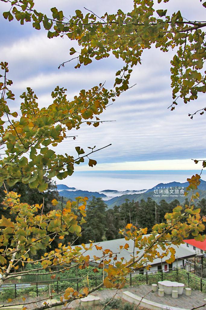 阿里山台18線住宿用餐-龍雲農場19 嘉義|阿里山台18線住宿用餐,體驗二款慢遊空間驚豔大自然就在身旁
