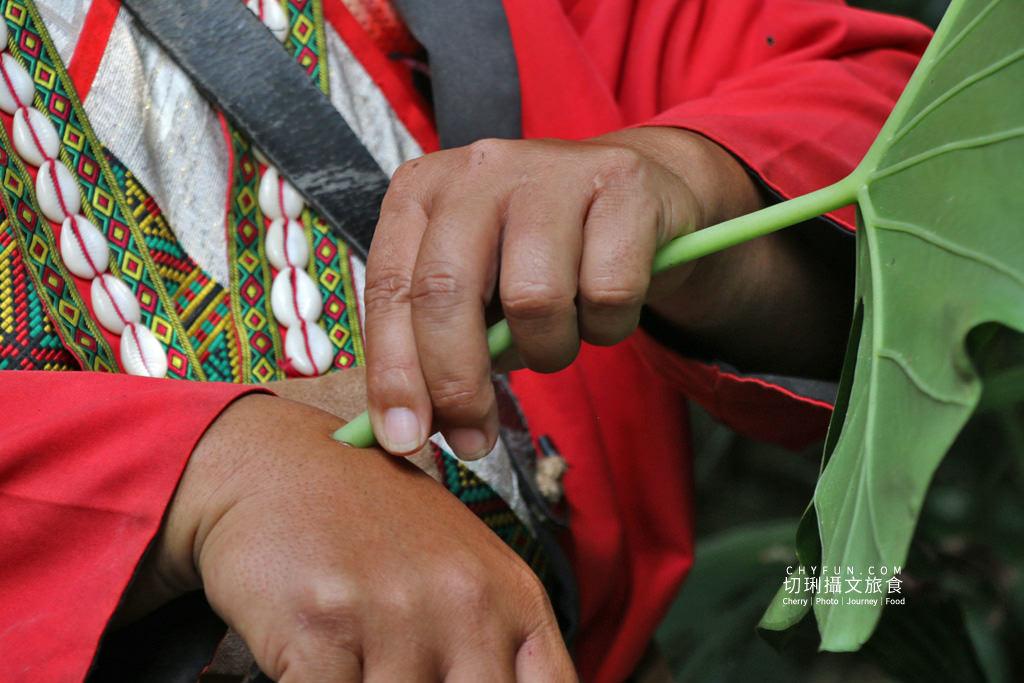 阿里山山美部落達娜伊谷07 嘉義|阿里山山美部落達娜伊谷忘憂小旅行,不一樣的水上餐廳用餐戲水仙境遊