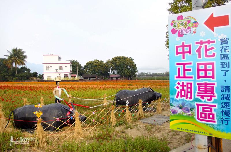 美濃花海12.jpg