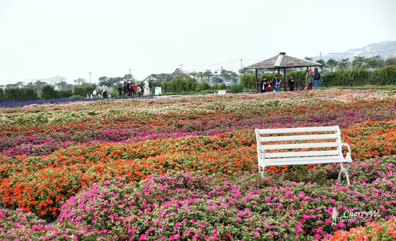 1461756151-0baa656813e161ea0ba1e7c22e08162c 台中|中社觀光花市鬱金香花季,歐式庭園浪漫自然
