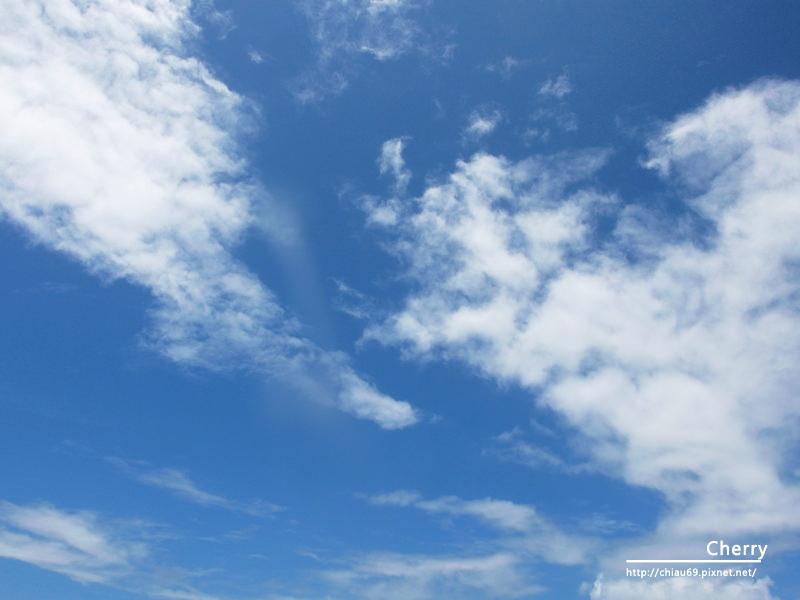 1461753717-8ffa3d91742935543de4c2eab016c409 澎湖|東吉島上飛機殘骸,曾經軌跡即將被草遮蔽成為歷史