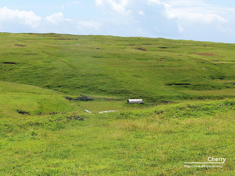 1461753722-d224e2a0302a8c8d024290a7b01f8fba 澎湖|東吉島上飛機殘骸,曾經軌跡即將被草遮蔽成為歷史