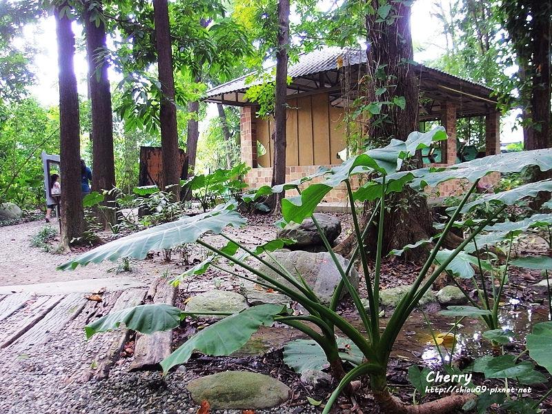 1461753811-1dd367c1b008b6e67bcbf27a3abb4c8c 屏東 手牽手趣遊八大森林樂園,用餐就在雲洞森林餐廳