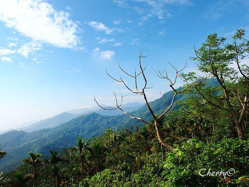 1461756553-4728e85f0fb234547d45ad263b479012 嘉義|探索茶山部落,親身體驗原住民迷人的文化風采