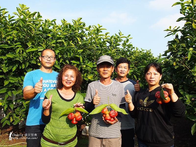 1461756690-04ed28690f42a0cadd6c24182b303d9f 屏東|自然農法與草生栽培的用心小農-茄苳蓮霧、維根鳳梨、里港檸檬