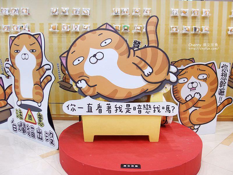 台南新天地與插畫玩躲貓貓吧03-白爛貓出沒