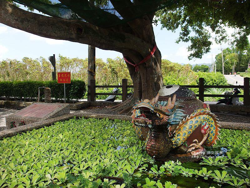 1471880177-c24a926462e54fd3847a13a34892f8dc 台東 台灣好行縱谷鹿野線與好玩卡,探賞鹿野擁抱自然,乘著好行好輕鬆