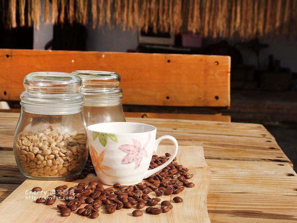 1487931379-005e1e9ae92dbfe2908f9ee61eba0aca 高雄|那瑪夏僑香咖啡高山看茶園櫻花林,品嚐高品質海拔的酸甘甜