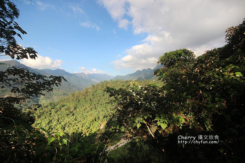 1487932616-07196b8cfbc062187ad89cdfa1a758c0 高雄|瑪雅樟樹林公園,沐浴在芬多精森林浴