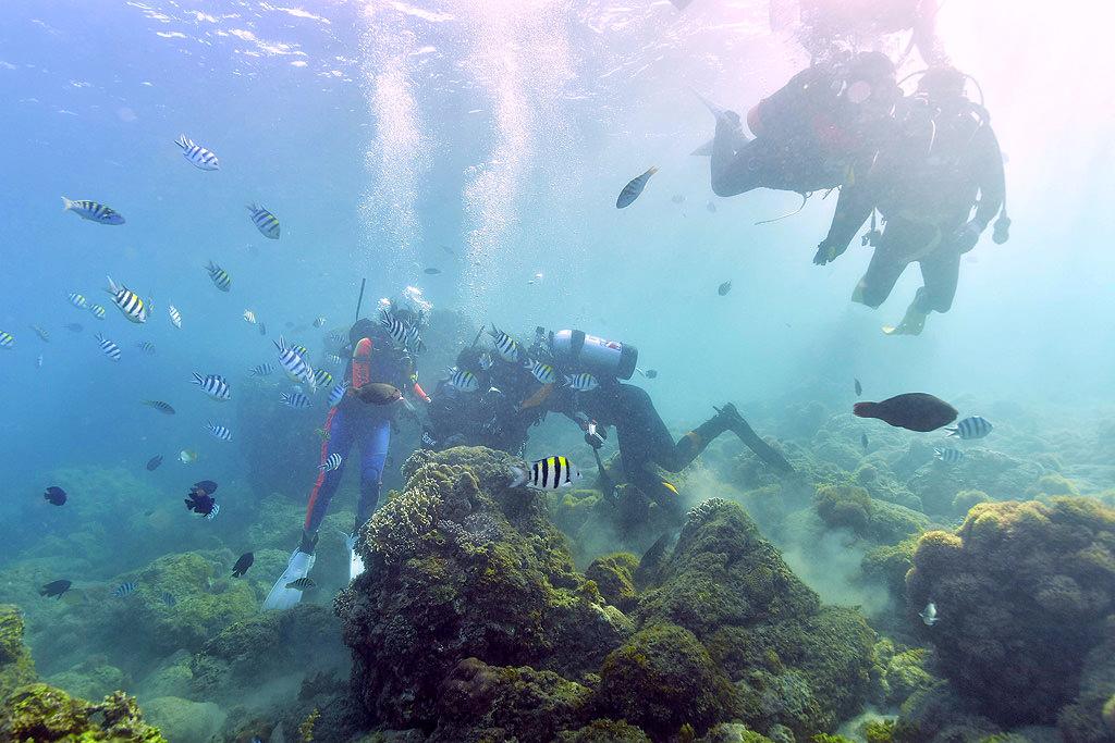 1493840393-7b33df45176ba465b5fab6f295a74dc5 屏東|墾丁861渡假中心,體驗潛水、遊艇、水上活動,專業通通有享受不一樣的墾丁遊