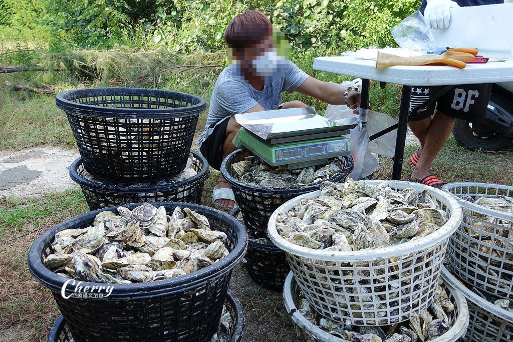 20170825020133_48 澎湖|白沙紫菜鮮蚵季,品嘗及展售白沙鄉新鮮農漁特產,錯過等明年