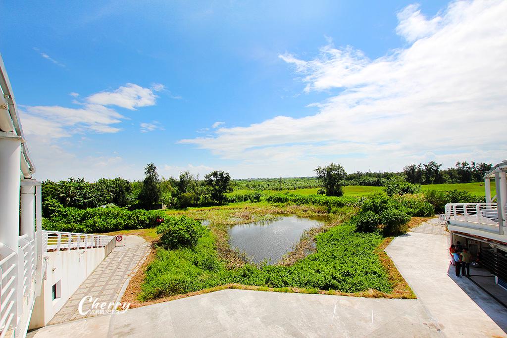 20170918234229_12 雲林|口湖遊客中心整治活化,將結合生態、小農,以家為元素再出發