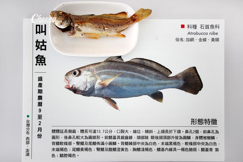 20171010051814_32 澎湖|湖西北寮認識加網魚,漁村生活半日遊