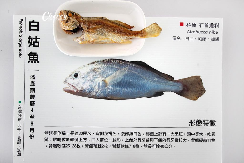 20171010051817_20 澎湖|湖西北寮認識加網魚,漁村生活半日遊
