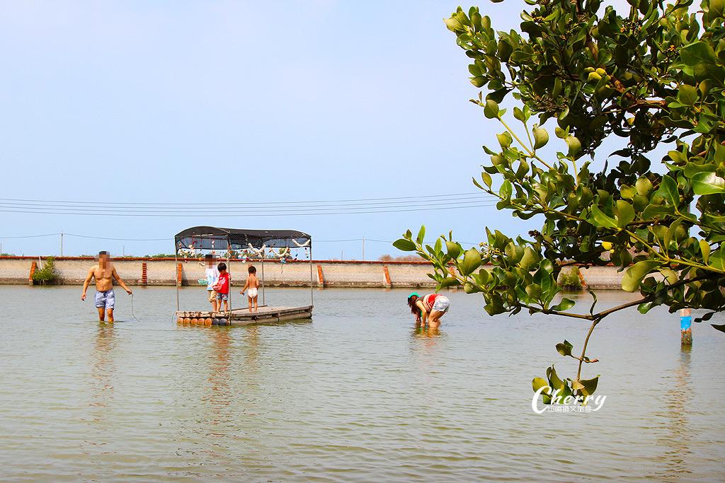 20171012051346_49 雲林|口湖馬蹄蛤主題館吃海鮮摸蛤,大人小孩玩生態休閒