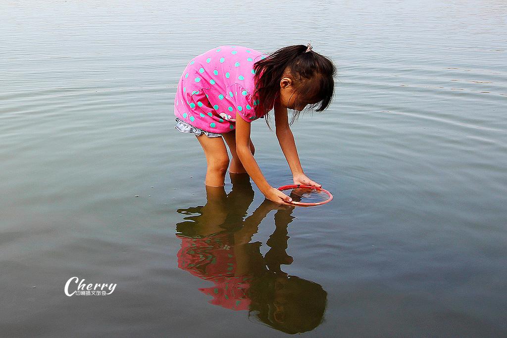 20171012051350_88 雲林|口湖馬蹄蛤主題館吃海鮮摸蛤,大人小孩玩生態休閒