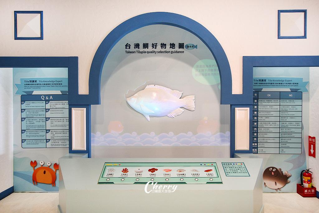 20171012094558_31 雲林|口湖台灣鯛生態創意園區,看魚遊互動好玩自然課