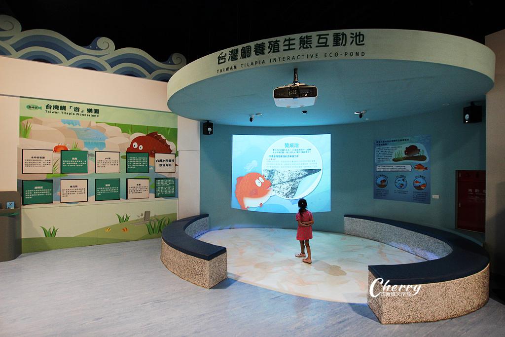 20171012094627_55 雲林|口湖台灣鯛生態創意園區,看魚遊互動好玩自然課