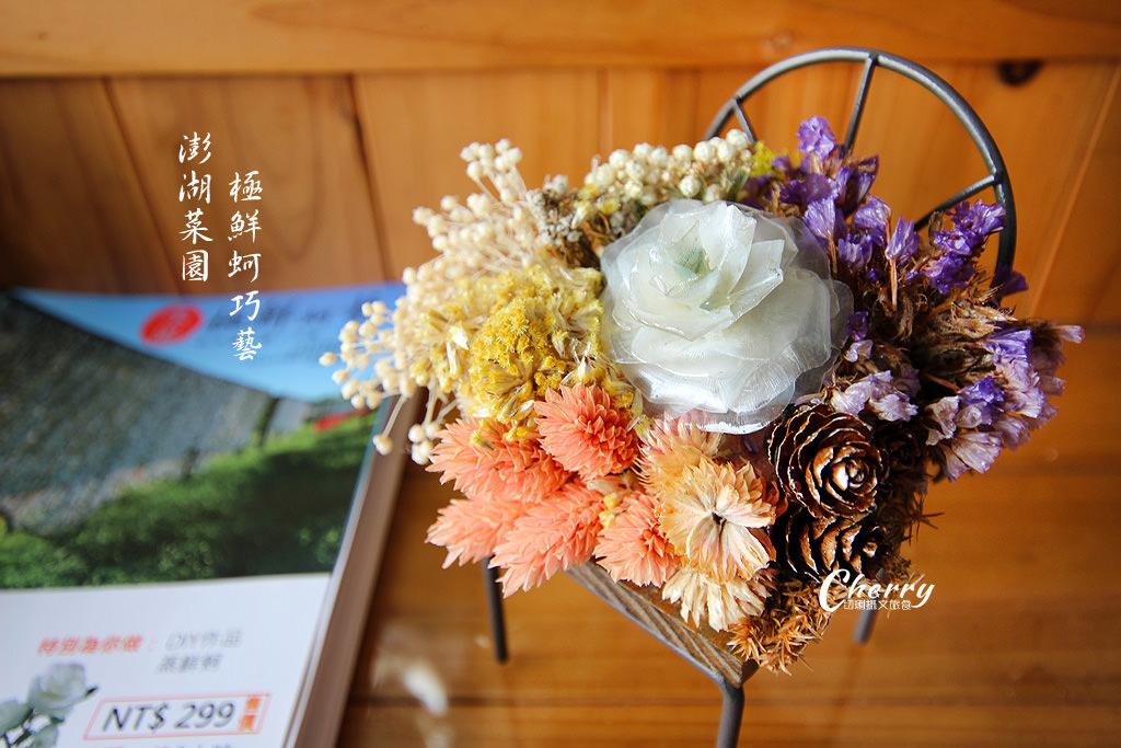 澎湖馬公菜園、魚鱗花01