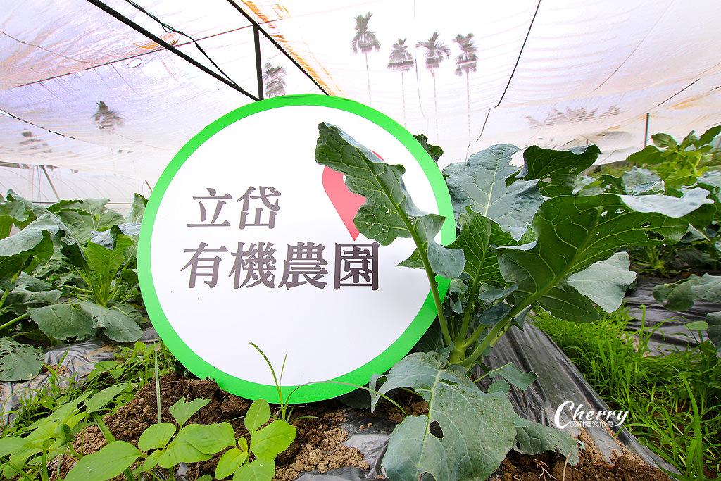 20171122144514_40 嘉義|中埔立岱有機農園,自產自銷當季好蔬果