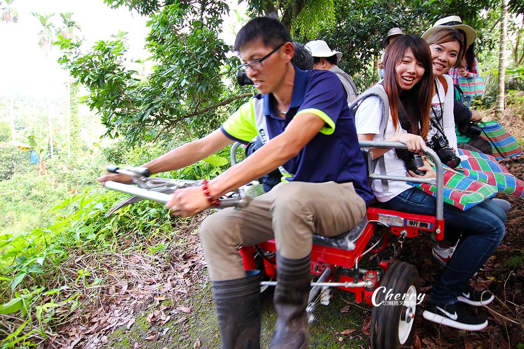 20171122161824_88 嘉義|竹崎阿舍農園,來去友善耕作的田園採果樂活
