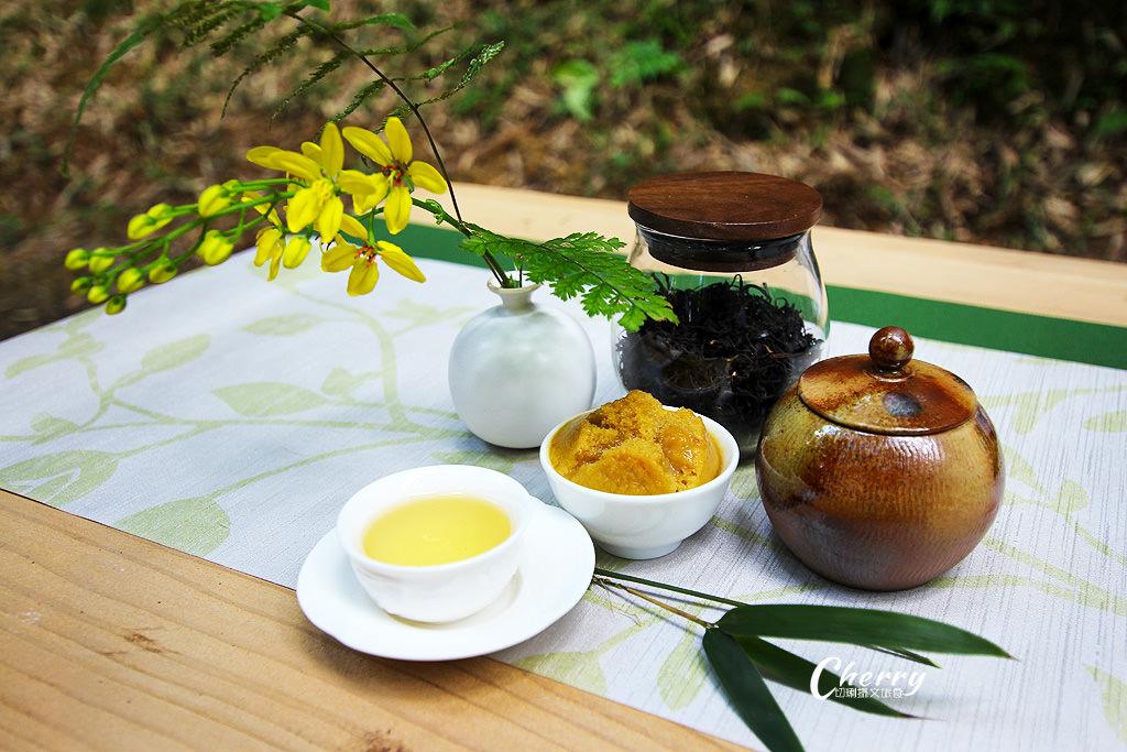 20171208112047_8 嘉義|瑞里秋季浪漫,綠色隧道品茗、吃美食、喝咖啡