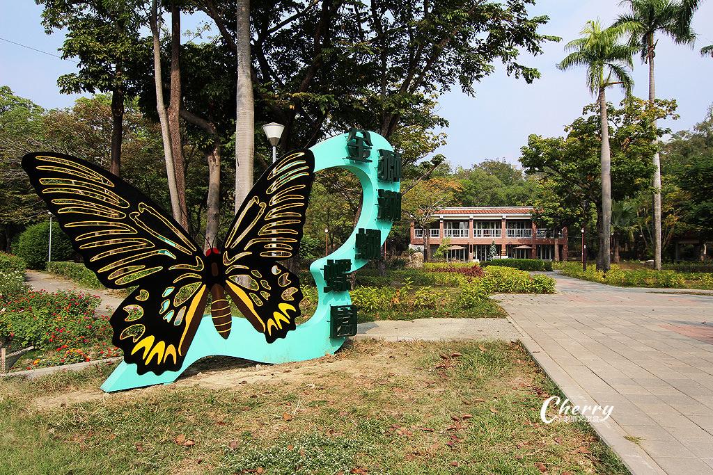 20171228072247_70 高雄|金獅湖蝴蝶園,近距離看蝴蝶翩翩飛舞與生態