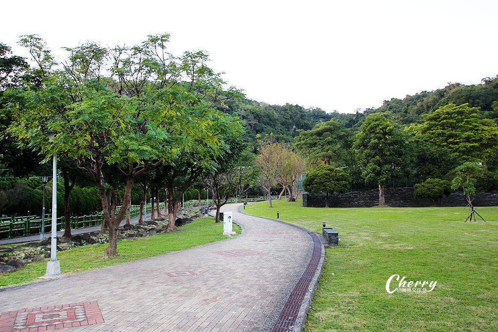 20180118013427_31 台北|原住民公園落羽松小園地,湖岸美景彷如置身於國外