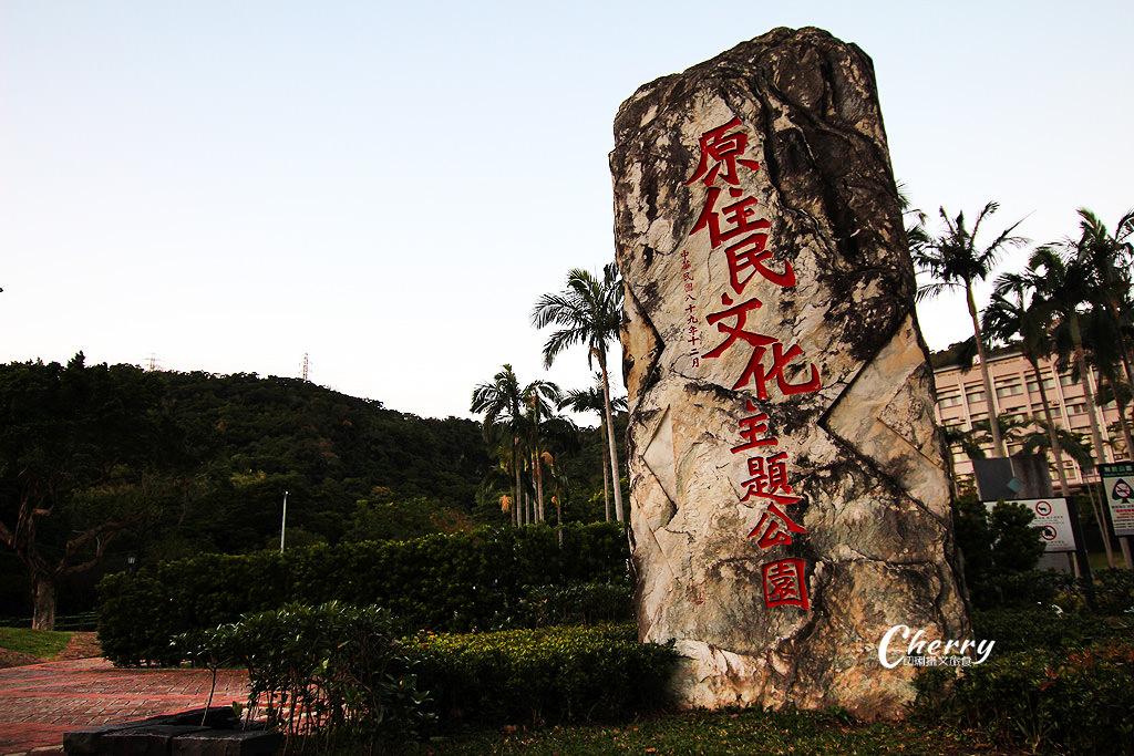 20180118013508_89 台北|原住民公園落羽松小園地,湖岸美景彷如置身於國外