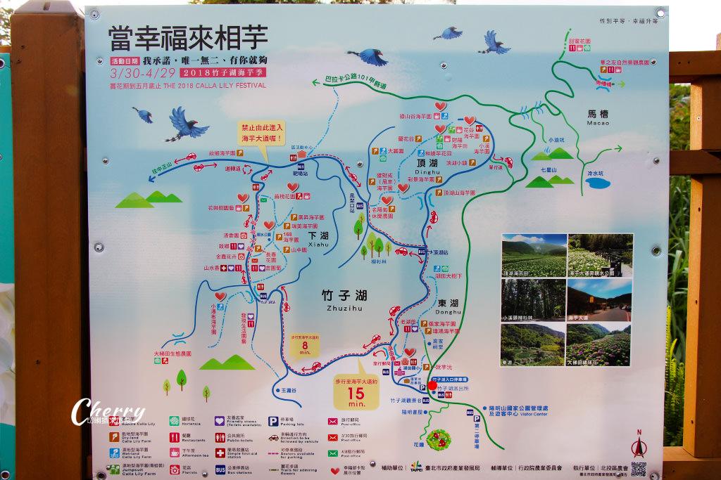 台北陽明山竹子湖海芋季旅遊地圖