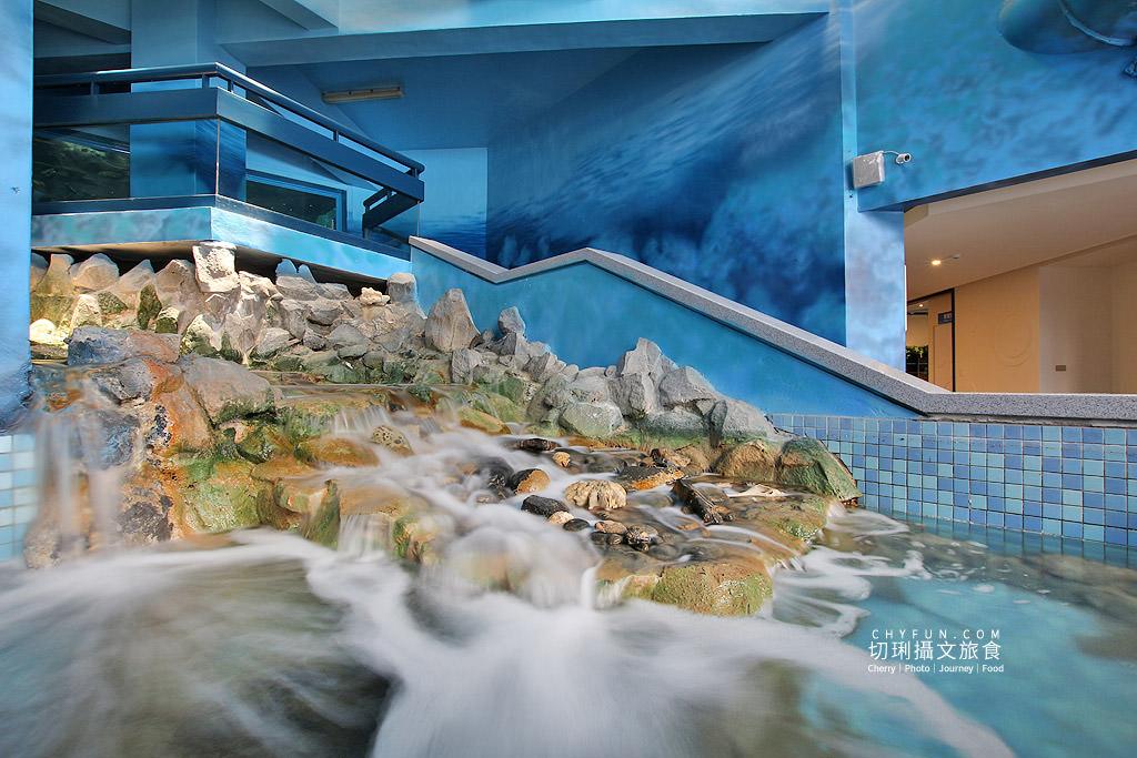 20180822221149_30 澎湖|澎湖水族館重新開幕,美麗藍色海洋世界再現