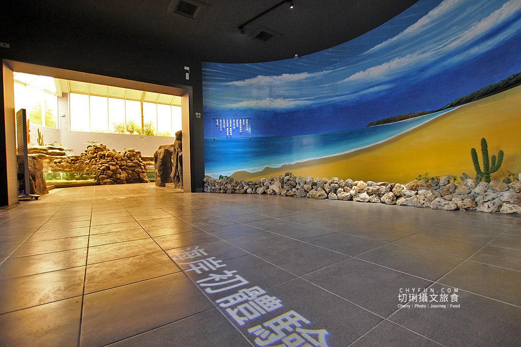 20180822221201_57 澎湖|澎湖水族館重新開幕,美麗藍色海洋世界再現