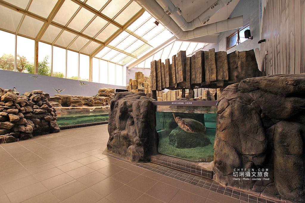 20180822221216_5 澎湖|澎湖水族館重新開幕,美麗藍色海洋世界再現