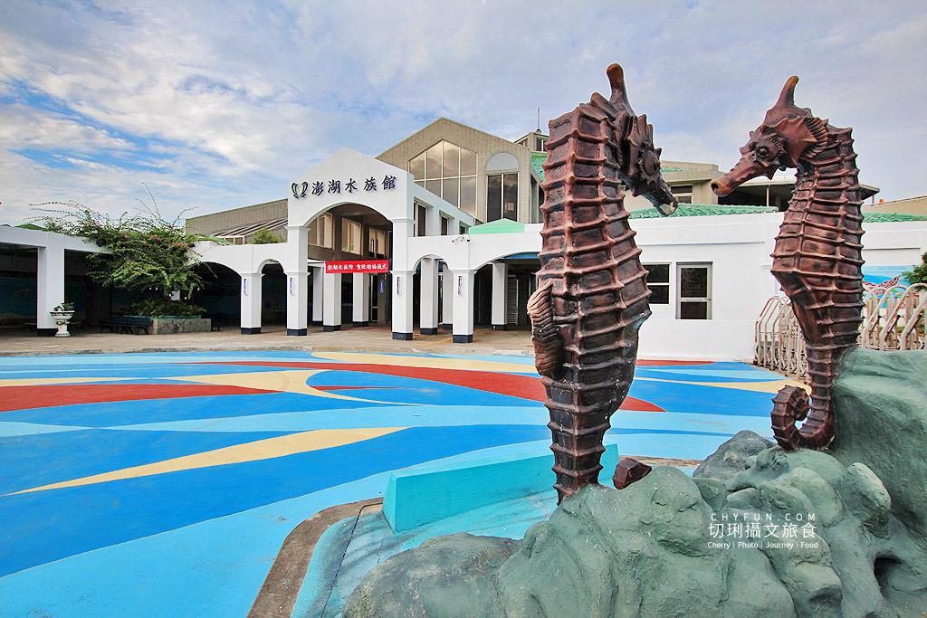 20180822221914_99 澎湖|澎湖水族館重新開幕,美麗藍色海洋世界再現