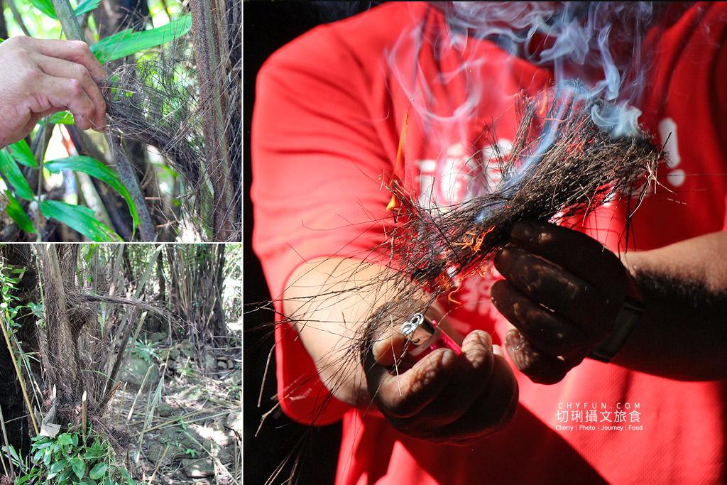 20181031211607_96 嘉義|阿里山新美部落野一回,追追鄒呢獵人營體驗探索