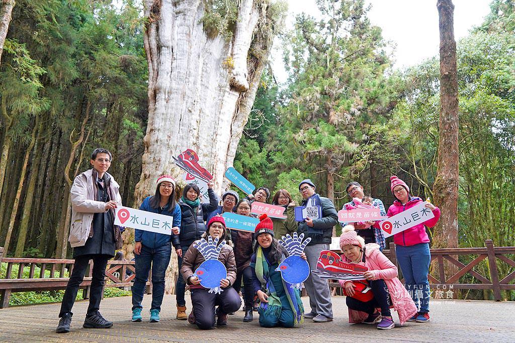 20190103235702_10 嘉義 阿里山水山巨木步道秘境,尋幽漫遊觀賞巨木風采與龍貓樹洞