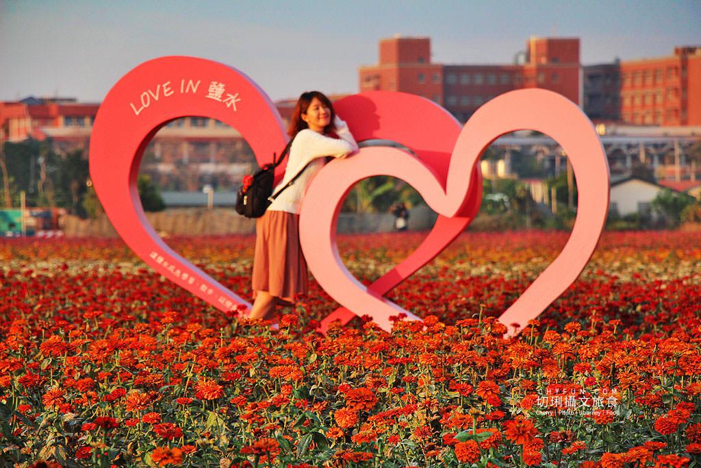 20190204010358_82 台南|鹽水花海襯月津燈節,彩色百日草與波斯花海綻放迎春