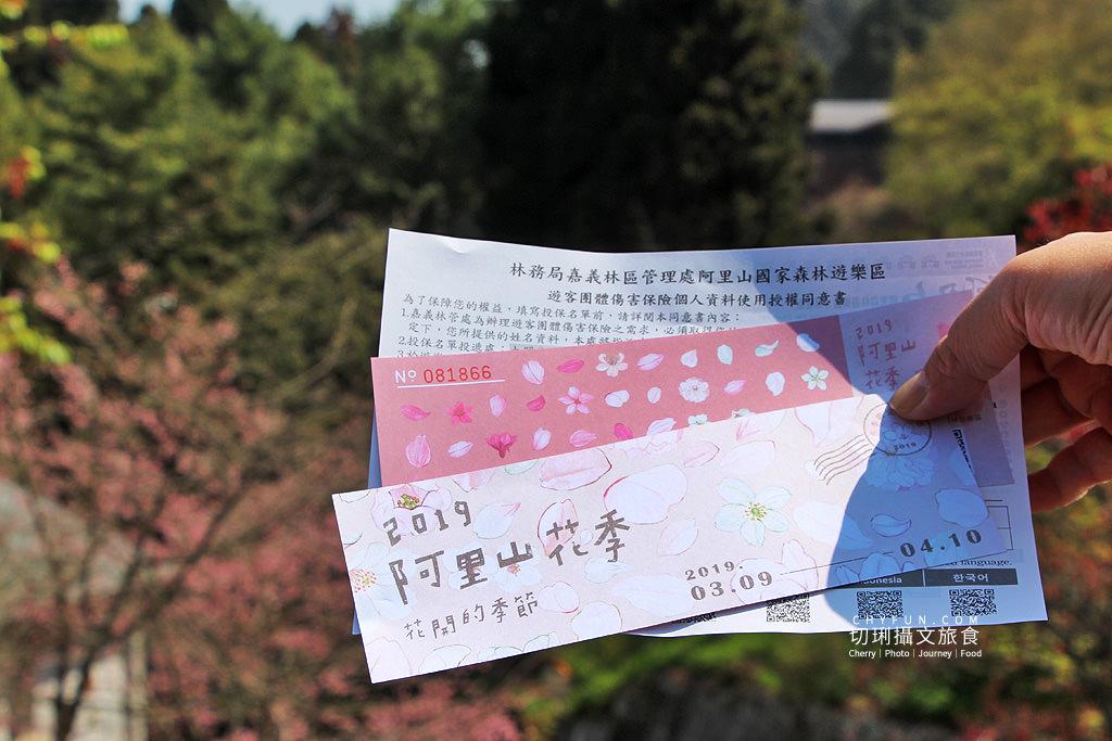 20190320005253_93 嘉義|阿里山賞櫻正旺,櫻花季二日遊美食美景趣