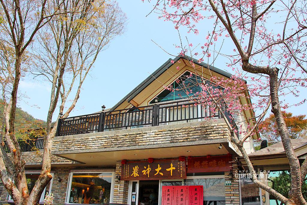20190321054947_89 嘉義|阿里山賞櫻正旺,櫻花季二日遊美食美景趣