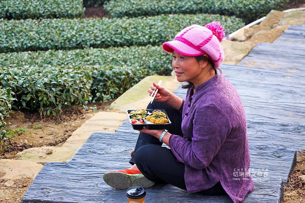 20190325031839_87 嘉義|瑞峰1314觀景台享茶園浪漫,在山頂藍天雲霧中品味茶便當