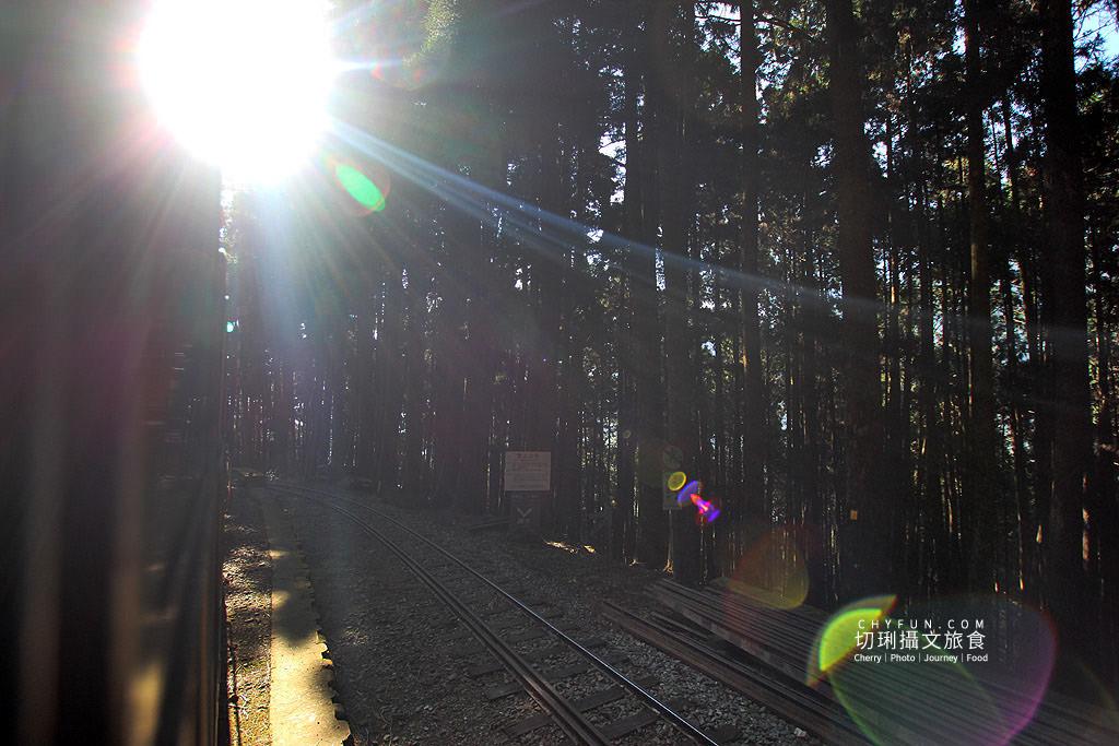 20190514220736_77 嘉義|阿里山小火車本線支線分清楚,4條森鐵行程資訊述明白
