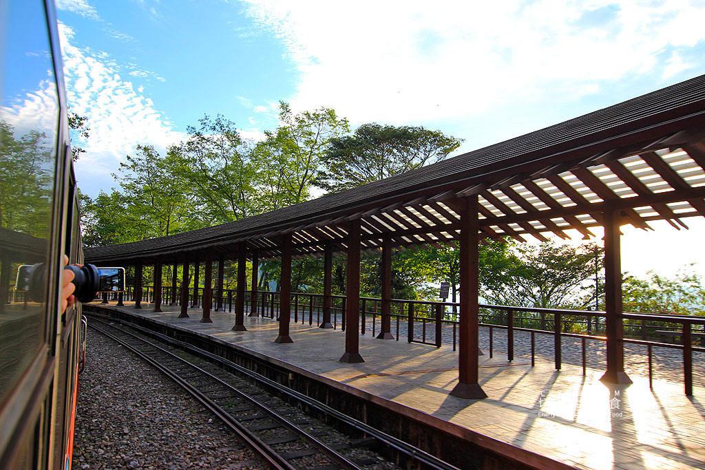 20190514220804_2 嘉義|阿里山小火車本線支線分清楚,4條森鐵行程資訊述明白