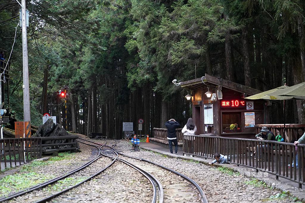 20190514220848_16 嘉義|阿里山小火車本線支線分清楚,4條森鐵行程資訊述明白