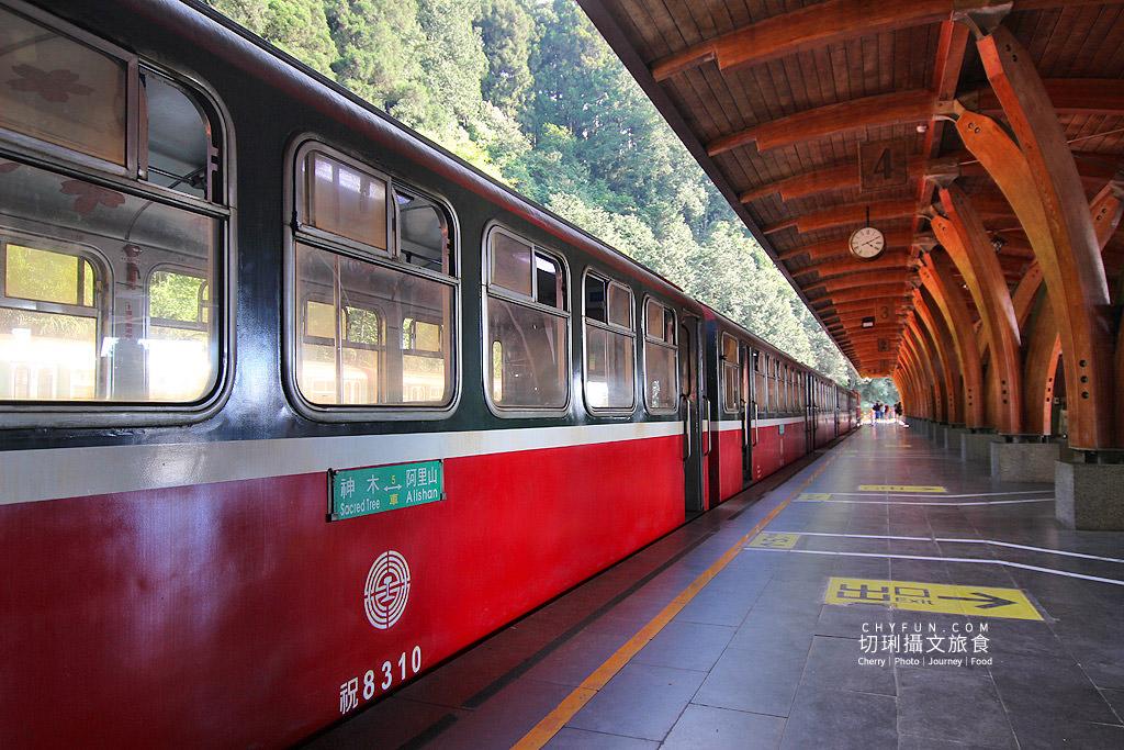 20190514220946_39 嘉義|阿里山小火車本線支線分清楚,4條森鐵行程資訊述明白