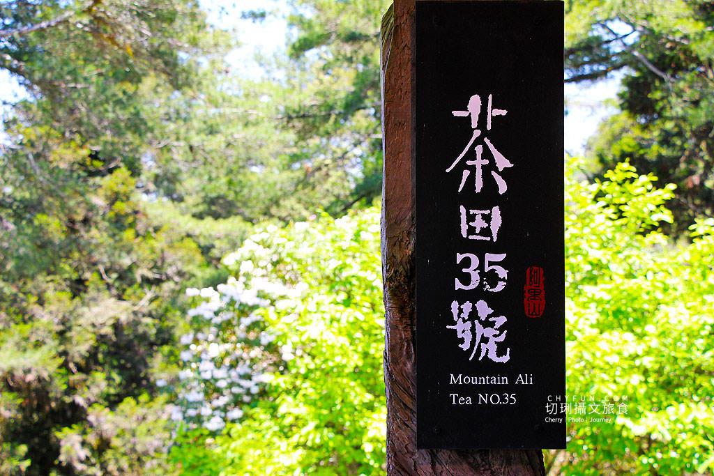 阿里山旅遊、茶田35、小笠原、祝山