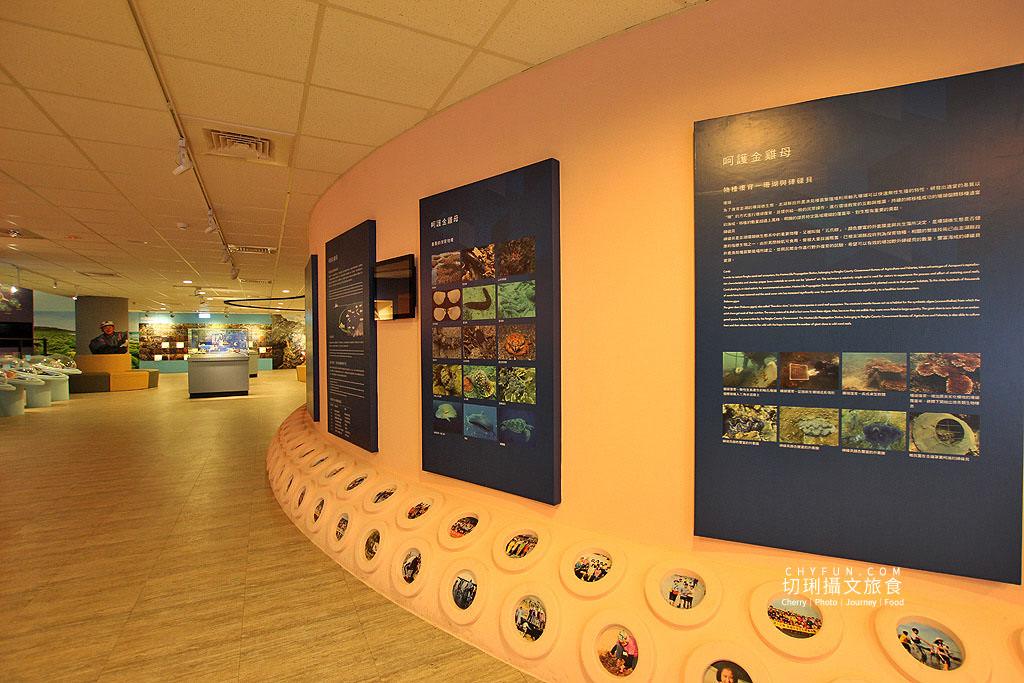 20190611005128_37 澎湖|澎湖海洋資源館,在地豐厚多元資訊的特色文化館